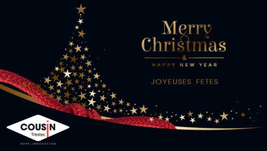 Décembre 2019 : Joyeuses fêtes de fin d'année !